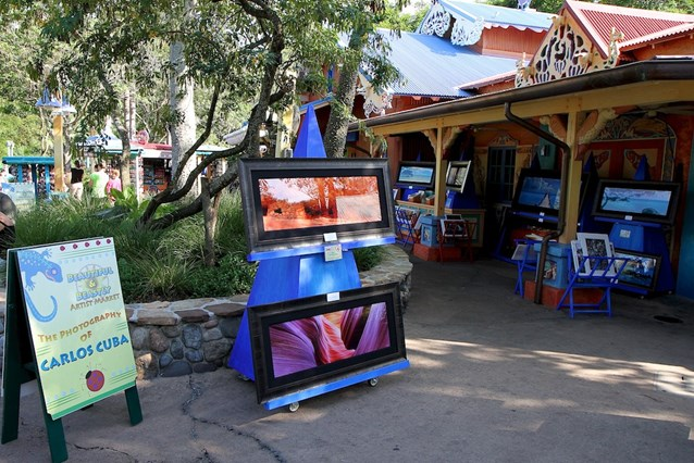 Disney's Animal Kingdom - Beautiful and Beastly artists market
