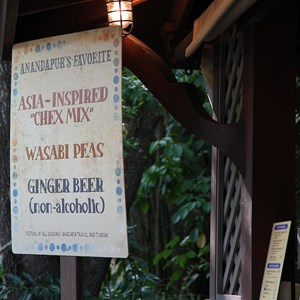 16 of 27: Disney's Animal Kingdom - Special menu items along the Asia walkway