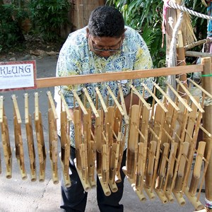18 of 27: Disney's Animal Kingdom - Indonesian traditional instruments
