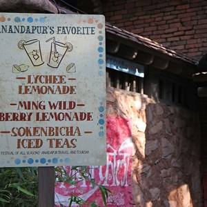 19 of 27: Disney's Animal Kingdom - Sundowner Celebration