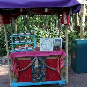 20 of 27: Disney's Animal Kingdom - Tea demonstrations in Asia