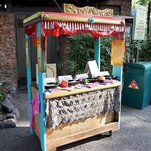 27 of 27: Disney's Animal Kingdom - Rice cooking demonstration by Yak and Yeti