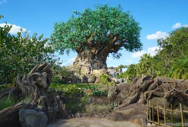 Disney's Animal Kingdom overview