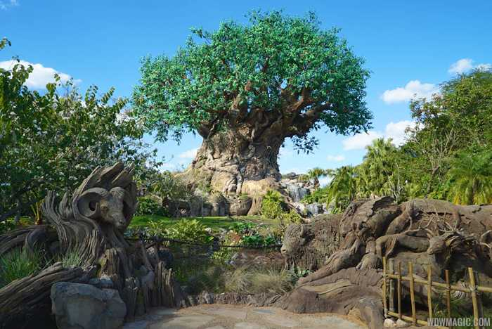 Disney's Animal Kingdom overview