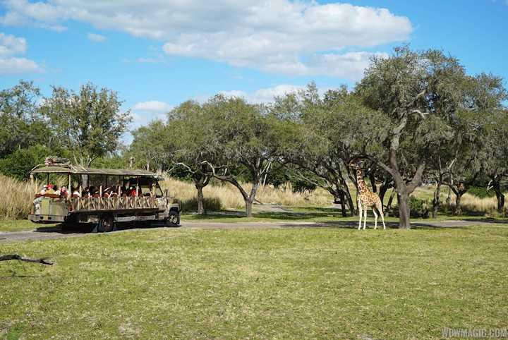 Churros and Jalapeño Pretzels removed from Disney's Animal Kingdom snack kiosks