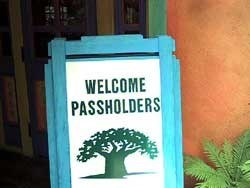 4 of 5: Disney's Animal Kingdom - New Animal Kingdom Annual Passholder lounge