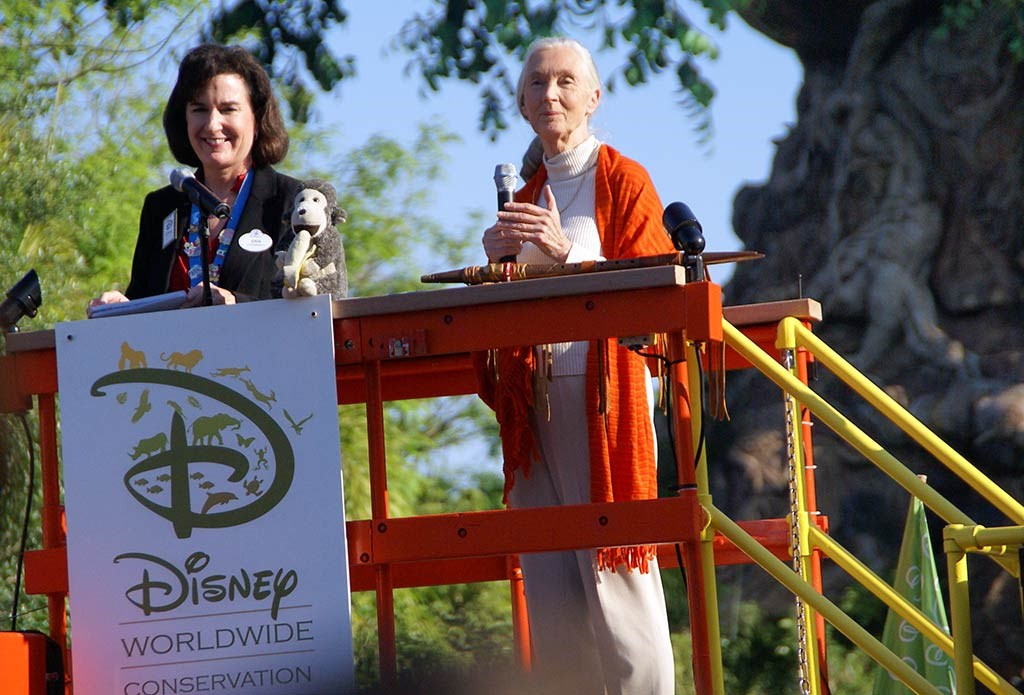 Animal Kingdom 10th Anniversary ceremony