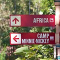 Camp Minnie-Mickey - Camp Minnie-Mickey - In-park directional signage