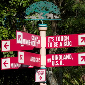 36 of 36: Camp Minnie-Mickey - Camp Minnie-Mickey - In-park directional signage