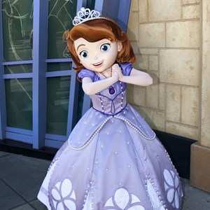 1 of 1: Character Meet and Greets at Disney's Hollywood Studios - Sofia the First meet and greet