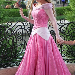 2 of 3: Character Meet and Greets at Epcot - New look for Princess Aurora
