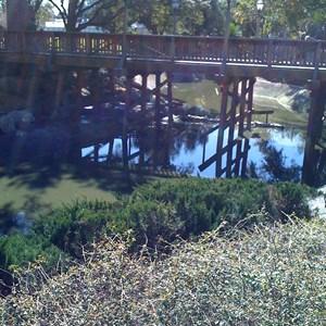 5 of 7: Cinderella Castle - Cinderella Castle moat draining