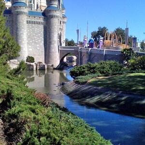 1 of 7: Cinderella Castle - Cinderella Castle moat draining