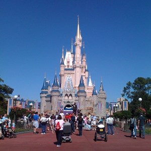 1 of 8: Cinderella Castle - Cinderella Castle refurbishment
