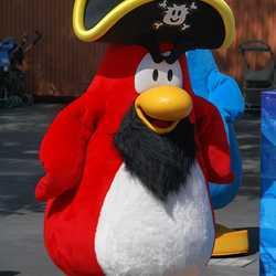 Club Penguin meet and greet