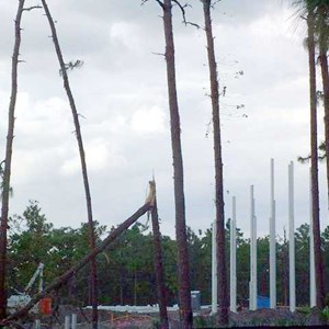 8 of 8: Crush 'n' Gusher - Typhoon Lagoon expansion