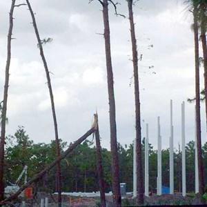 8 of 8: Crush 'n' Gusher - Typhoon Lagoon expansion
