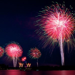 2 of 8: Disney's Celebrate America! - A Fourth of July Concert in the Sky - Show viewed from the Polynesian Resort Beach