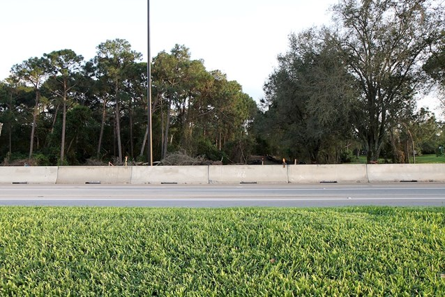 Disney's Hollywood Studios - Cleared area just outside the Studios entrance on E Buena Vista Drive