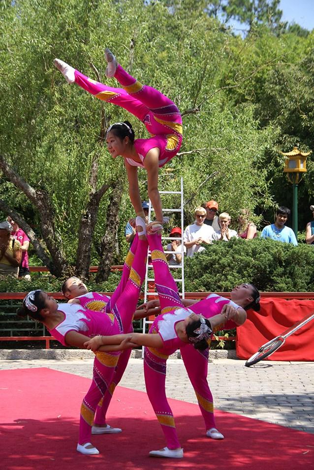 Dragon Legend Acrobats