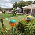 Epcot - 2014 FIFA World Cup at Epcot - Topiary
