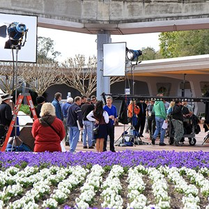 4 of 8: Epcot - Tom Bergeron filming America's Funniest Home Videos at Epcot