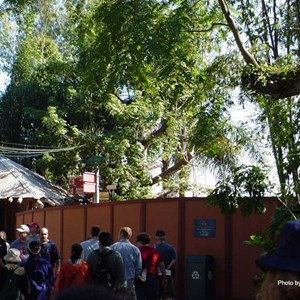 2 of 8: Expedition Everest - Expedition Everest construction