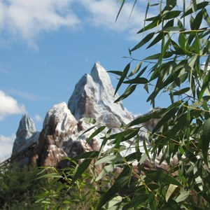 21 of 44: Expedition Everest - Expedition Everest construction