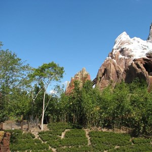 41 of 44: Expedition Everest - Expedition Everest construction