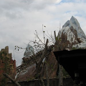 14 of 47: Expedition Everest - Expedition Everest queue area preview