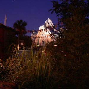 10 of 20: Expedition Everest - Expedition Everest at night
