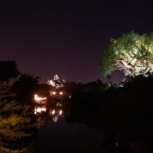 19 of 20: Expedition Everest - Expedition Everest at night