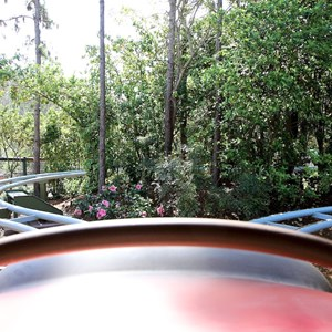 37 of 81: Fantasyland - Front row view from the Barnstormer