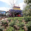 Fantasyland - Some of the Storybook Circus landscaping