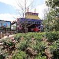 Fantasyland - Some of the Storybook Circus landscaping
