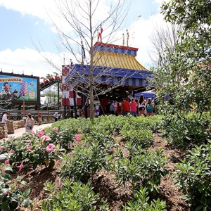 80 of 81: Fantasyland - Some of the Storybook Circus landscaping