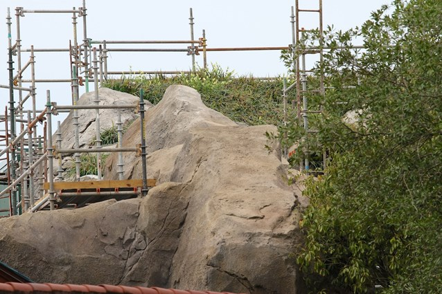 Fantasyland - The greenery on the rockwork  looks extremely realistic