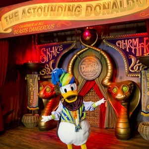 2 of 8: Fantasyland - Inside Pete's Silly Sideshow - The Astounding Donaldo