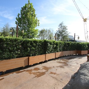 3 of 6: Fantasyland - Walls down at Enchanted Forest entrance - rows of planters line the entrance