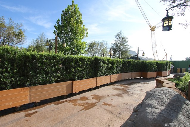 Fantasyland - Walls down at Enchanted Forest entrance - rows of planters line the entrance