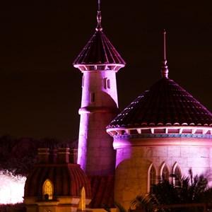 16 of 17: Fantasyland - Prince Eric's Castle at nighttime
