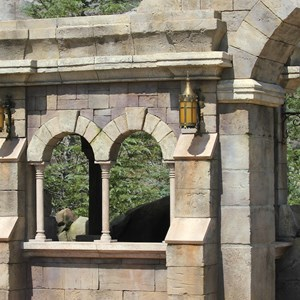 5 of 40: Fantasyland - New Fantasyland Enchanted Forest - details around the entrance to Be Our Guest Restaurant
