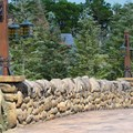 Fantasyland - New Fantasyland Enchanted Forest - The approach to Bonjour Village Gifts inside Belle&#39;s Village