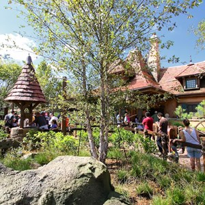 32 of 40: Fantasyland - New Fantasyland Enchanted Forest - Enchanted Tales with Belle