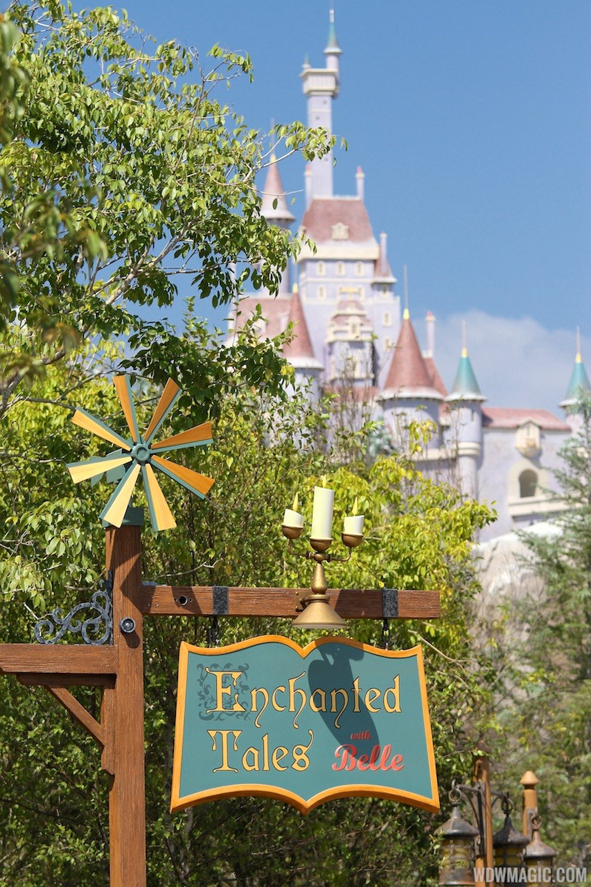 Inside the Enchanted Forest