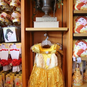 23 of 24: Fantasyland - Bonjour Village Gifts merchandise