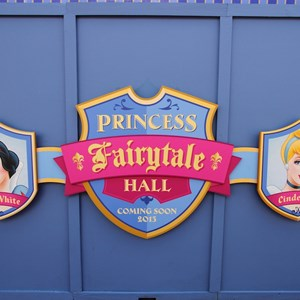 2 of 3: Fantasyland - Princess Fairytale Hall signage and scrim