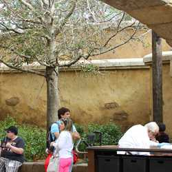 New Fantasyland backstage show building now hidden from view