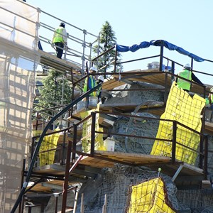 1 of 11: Fantasyland - Seven Dwarfs Mine Train coaster construction - trees arrive