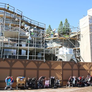 5 of 11: Fantasyland - Seven Dwarfs Mine Train coaster construction - trees arrive